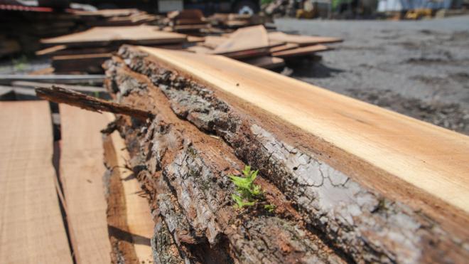 Lumber Yard Plumsteadville, PA